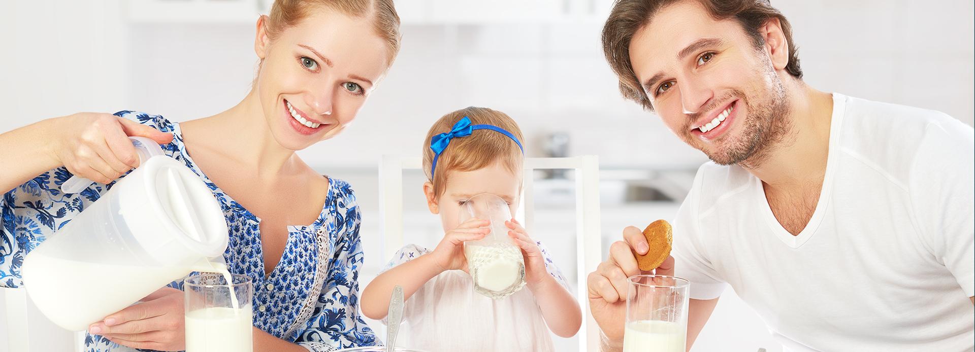 Jogurt - piimhappebakterite jõud